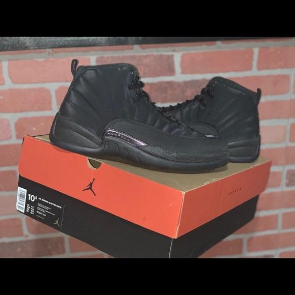 brand new 1a1c5 a223c Air Jordan Retro 12 'Winterized' Size 10.5